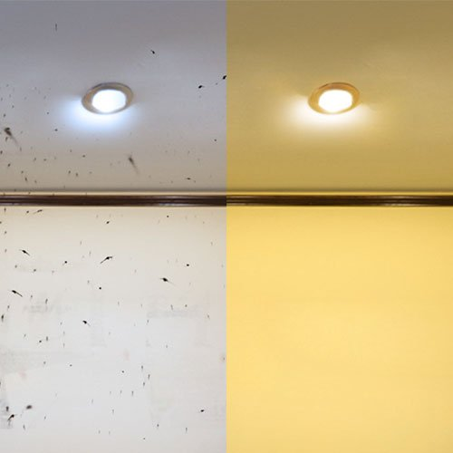 Hannochs_LED_Bulb_Anti-Mosquito_9-watt_Bulb-Banner