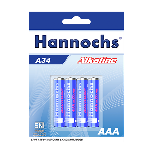 Hannochs_Alkaline-Battery_A34